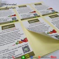 รูป Sticker 2019 05 200x200 - ประกอบเนื้อหา สติ๊กเกอร์กันปลอมแปลง สติ๊กเกอร์กระดาษ